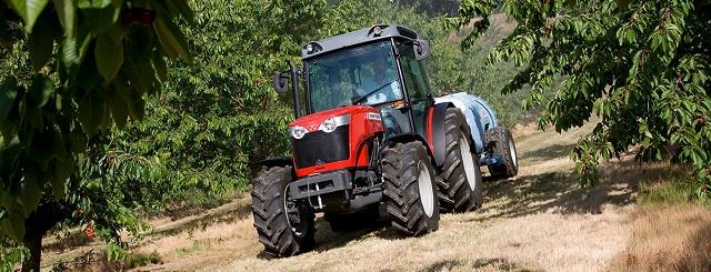 Massey Ferguson 3600 ültetvény traktor
